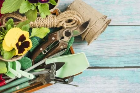8 ابزار ضروری در باغبانی برای تازه کارها